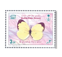 Butterflies group