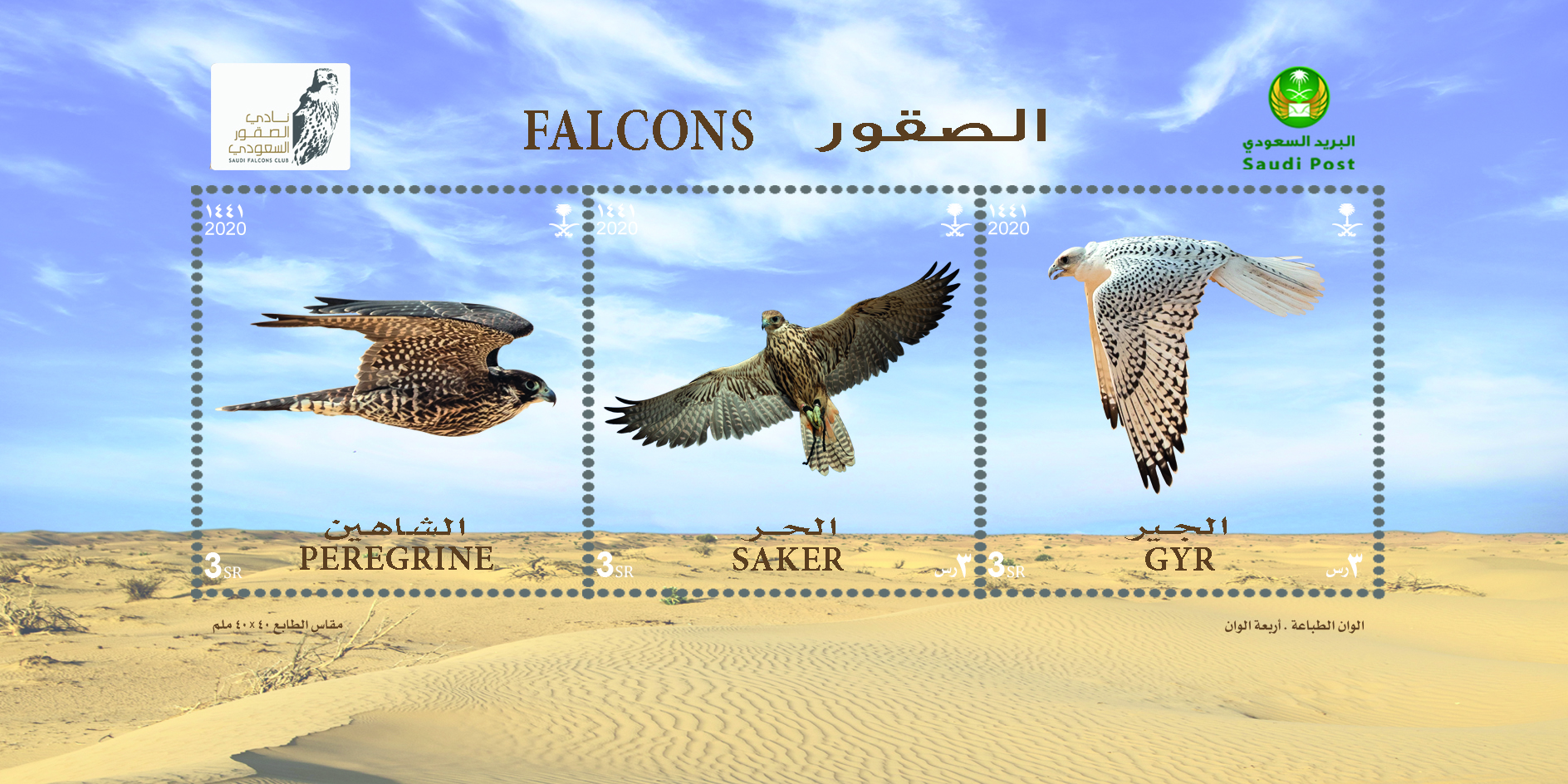 Saudi Post Issued a Postal Stamp on Falcons